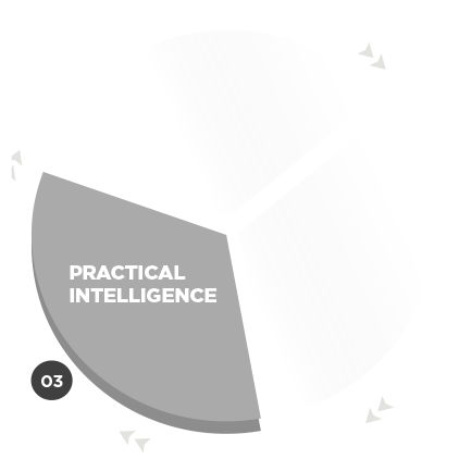 Practical Intelligence UPP